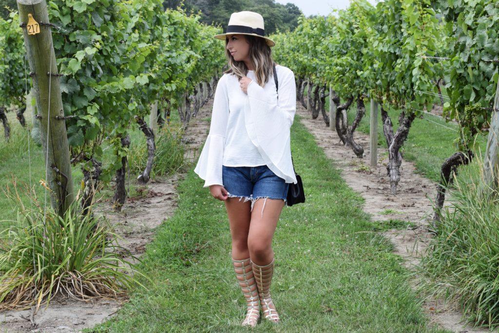 vineyard3